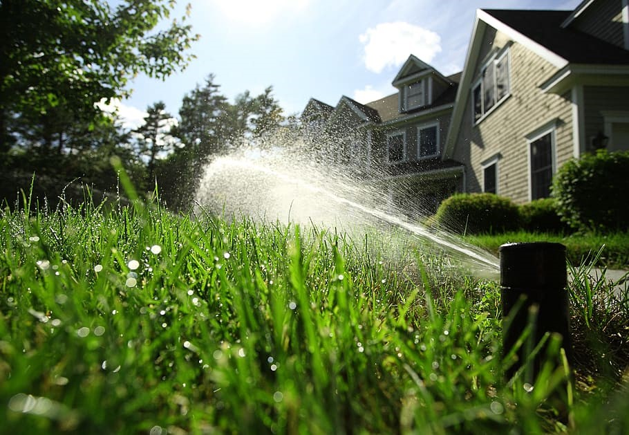4 Ways to Reduce Outdoor Water Use in California