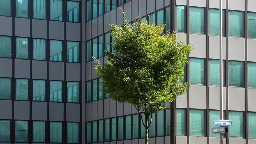 How Green Buildings Overlap with Human Health